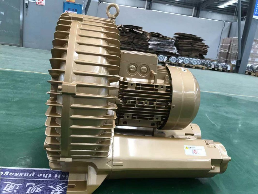 Low Noise Single Phase Vacuum Pump With Variable Frequency Motor For Car Wash